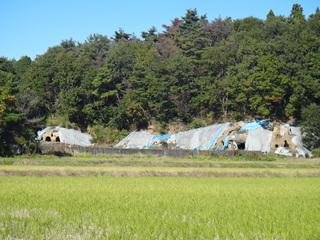 2012.11.8郷土史研究2.JPG